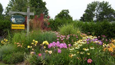 gardensplus.jpg